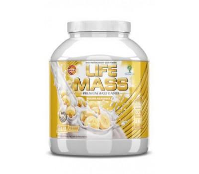 Tree of Life Life Mass 6lb (2730 гр)